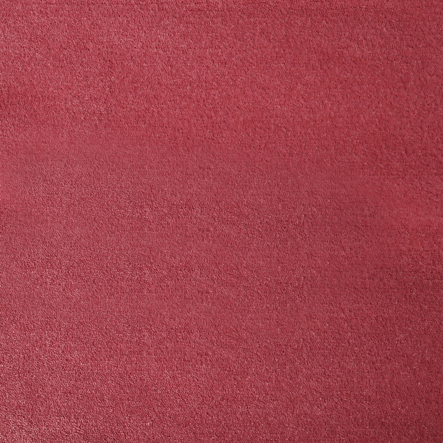 royal red carpet texture. Luxury Nylon Carpet Royal Red Texture