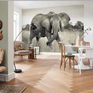 Elephant Mural Wallpaper