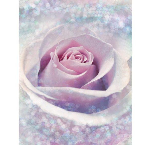 Delicate Rose Photo Mural