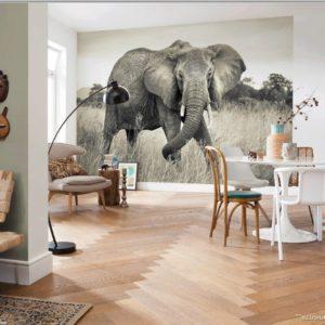 Elephant Mural Wallpaper