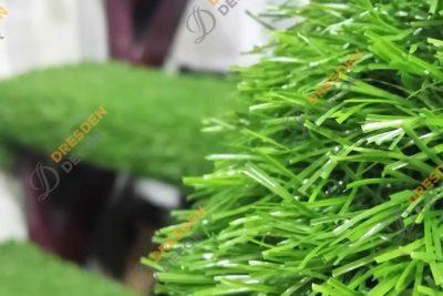 Private Home-25mm Grass Carpet